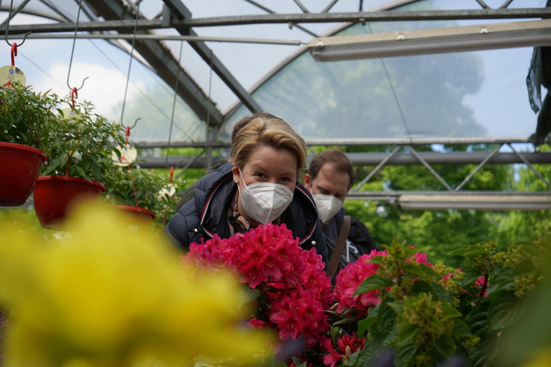 Franziska Giffeys Gartentipp
